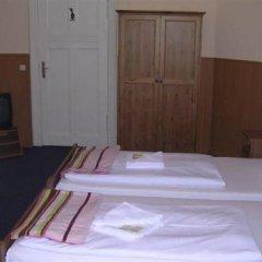 Hotel Pension Rheingold 2* Стандартный номер с различными типами кроватей фото 11