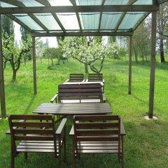 Отель Agriturismo Villa Selvatico Италия, Вигонца - отзывы, цены и фото номеров - забронировать отель Agriturismo Villa Selvatico онлайн фото 7
