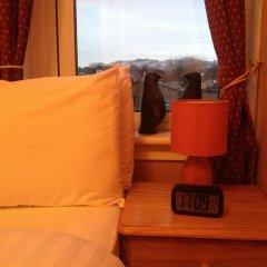 Отель Twin Lions Hotel Великобритания, Эдинбург - отзывы, цены и фото номеров - забронировать отель Twin Lions Hotel онлайн сейф в номере