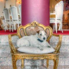 Hotel Antigone с домашними животными