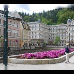 Отель Pension Napoleon Чехия, Карловы Вары - отзывы, цены и фото номеров - забронировать отель Pension Napoleon онлайн спа фото 2