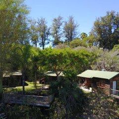 Отель Avoca River Cabins фото 9