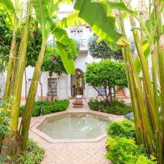 Отель Le Riad Berbere Марокко, Марракеш - отзывы, цены и фото номеров - забронировать отель Le Riad Berbere онлайн