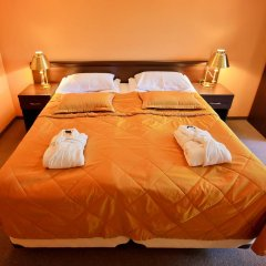 Гостиница Русь 4* Люкс с различными типами кроватей фото 14