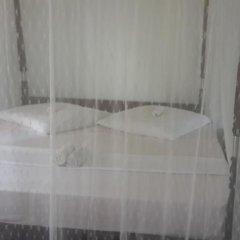 Отель Roshini Inn Стандартный номер с различными типами кроватей фото 5