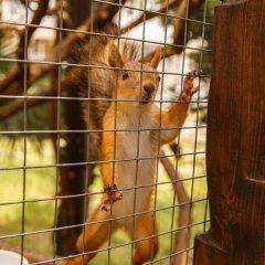 Гостиница Грэйс Кипарис фото 6