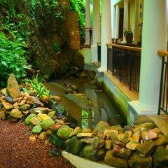 Отель Tropical Retreat фото 3