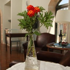 Отель Tur Sinai Organic Farm Resort Иерусалим интерьер отеля