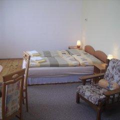 Отель Zlaty Jelen комната для гостей фото 2