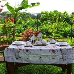 Отель Lanka Rose Guest House Шри-Ланка, Берувела - отзывы, цены и фото номеров - забронировать отель Lanka Rose Guest House онлайн питание фото 2