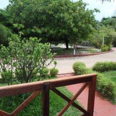 Отель Edena Kely 3* Номер Комфорт с различными типами кроватей фото 4