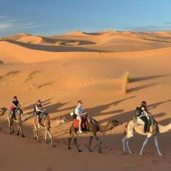 Отель Morocco Desert Trek Марокко, Мерзуга - отзывы, цены и фото номеров - забронировать отель Morocco Desert Trek онлайн детские мероприятия фото 2