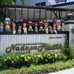 Отель Nadapa Resort гостиничный бар