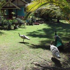 Отель Racha Sunset Resort (Koh Siboya) фото 7