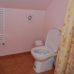 Отель Babrukas Литва, Тракай - отзывы, цены и фото номеров - забронировать отель Babrukas онлайн ванная фото 2