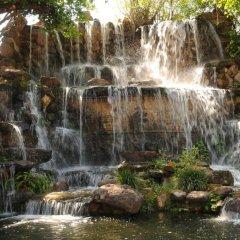 City Angkor Hotel фото 6