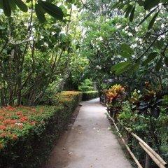Отель Asia Resort Koh Tao Таиланд, Остров Тау - отзывы, цены и фото номеров - забронировать отель Asia Resort Koh Tao онлайн фото 3