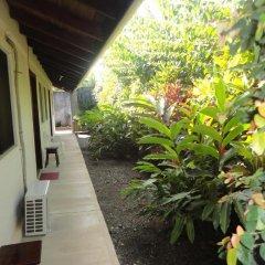 Отель Cabinas Tropicales Puerto Jimenez 3* Номер категории Эконом фото 3