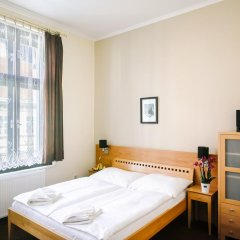 Отель Penzion U Salzmannu 3* Стандартный номер фото 8