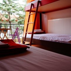 Отель The White Rabbit комната для гостей фото 3