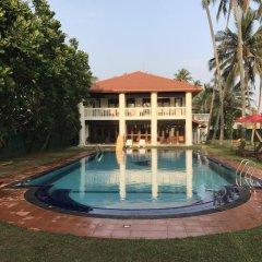 Отель Palm Beach Villa Шри-Ланка, Ваддува - отзывы, цены и фото номеров - забронировать отель Palm Beach Villa онлайн бассейн фото 3