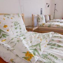 Pal's Hostel & Apartments Стандартный номер с различными типами кроватей