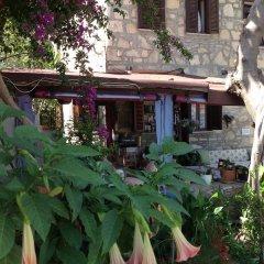 Yukser Pansiyon Турция, Сиде - отзывы, цены и фото номеров - забронировать отель Yukser Pansiyon онлайн фото 9