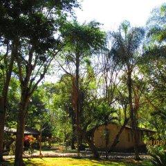 Отель El Bosque Hotel Гондурас, Копан-Руинас - отзывы, цены и фото номеров - забронировать отель El Bosque Hotel онлайн фото 9