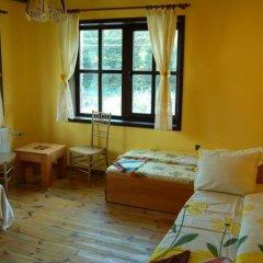 Отель Guest House The Jolly House Болгария, Чепеларе - отзывы, цены и фото номеров - забронировать отель Guest House The Jolly House онлайн комната для гостей фото 2
