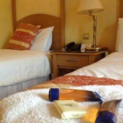 The Lucan Spa Hotel 3* Стандартный номер с 2 отдельными кроватями