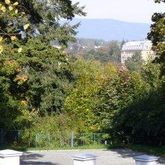 Отель Apartman Nadezda Чехия, Карловы Вары - отзывы, цены и фото номеров - забронировать отель Apartman Nadezda онлайн фото 4
