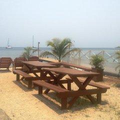 Отель Utila Гондурас, Остров Утила - отзывы, цены и фото номеров - забронировать отель Utila онлайн пляж
