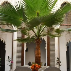 Отель Riad Azahra Марокко, Рабат - отзывы, цены и фото номеров - забронировать отель Riad Azahra онлайн бассейн