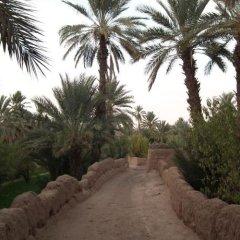 Отель AppartHotel Khris Palace Марокко, Уарзазат - отзывы, цены и фото номеров - забронировать отель AppartHotel Khris Palace онлайн