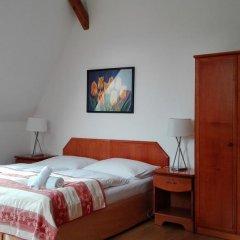 Hotel Jana / Pension Domov Mladeze Номер Комфорт с различными типами кроватей фото 6