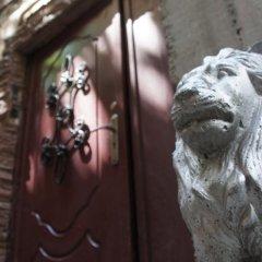 Dream Hostel Odessa с домашними животными