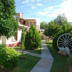 Отель El Olivo Аргентина, Сан-Рафаэль - отзывы, цены и фото номеров - забронировать отель El Olivo онлайн фото 8