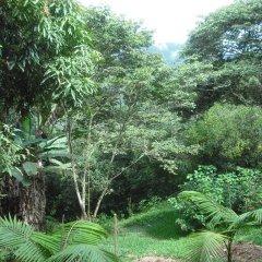 Hotel Cabanas Paradise фото 4