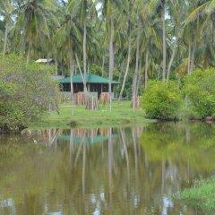Отель Aqua Front Yala Resort фото 2