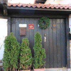 Отель Guest House Divna 2* Коттедж фото 2