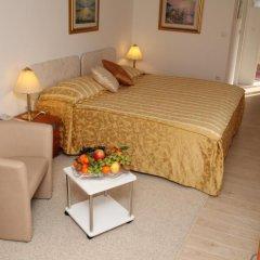 Hotel Vila Tina 3* Номер Делюкс с различными типами кроватей фото 22