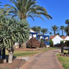 Отель Aldiana Fuerteventura Номер Эконом с разными типами кроватей фото 5