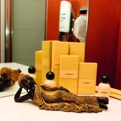 Hotel Business & More 4* Номер Делюкс с различными типами кроватей фото 8