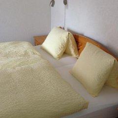 Hotel Alpina комната для гостей фото 2