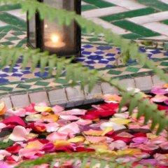 Отель Riad Mimouna Марокко, Марракеш - отзывы, цены и фото номеров - забронировать отель Riad Mimouna онлайн фото 5