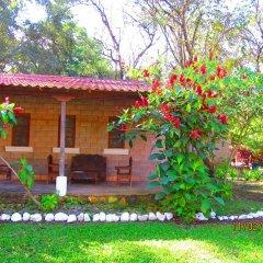 Отель El Bosque Hotel Гондурас, Копан-Руинас - отзывы, цены и фото номеров - забронировать отель El Bosque Hotel онлайн фото 4