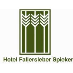 Hotel Fallersleber Spieker интерьер отеля фото 2