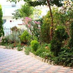 Отель Sunny Island Obzor Болгария, Аврен - отзывы, цены и фото номеров - забронировать отель Sunny Island Obzor онлайн