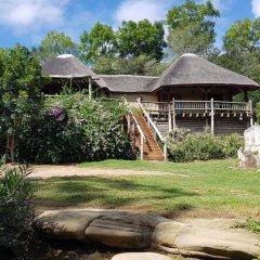 Отель Avoca River Cabins фото 11
