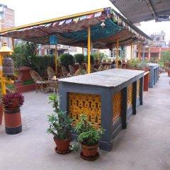 Отель Chillout Resort Непал, Катманду - отзывы, цены и фото номеров - забронировать отель Chillout Resort онлайн